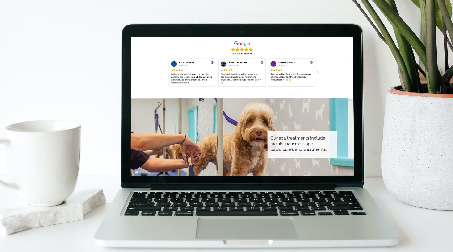 affordable dog groomer pet business website